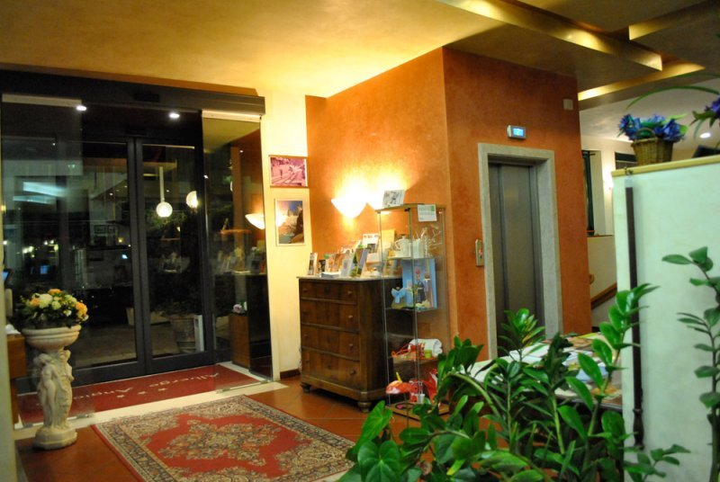 Hotel Angiolino - Hall